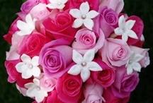 Wedding Bouquets Pretty Pink / by Kaitlin Kozlowski