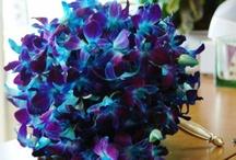 Wedding Bouquets Bold Blue & Green