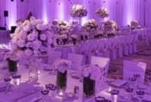 Wedding Receptions Lavender