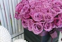 Wedding Centerpieces Lavender