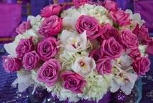 Wedding Centerpieces Hot Pink