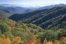 Smoky Mountains / The Great Smoky Mountains National Park / by Amy Gardner