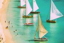 Beach Bliss!! / All about the beach! / by Lynn Barnett