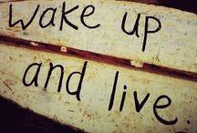 Life / Vida