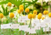 Gift & Escort Card Tables