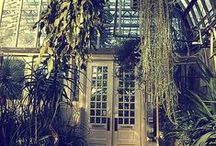External | Greenhouses | Garden