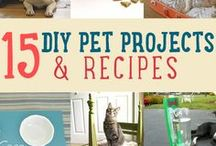 Furred & Feathered Friends / Salvage style and DIY projects designed to paper you pets without plundering your wallet.