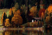 colour :: russet