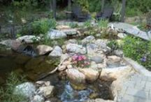 Water Features / South County Landscaping specializes in ponds, pondless waterfalls, and fountains. Whether it is a small or large water feature, we have the proper knowledge and equipment to install it. Our company is certified with Aquascape.