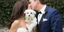 Wedding Inspiration | Winter / Wedding Inspiration: Winter Weddings