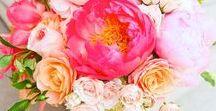 Wedding Inspiration | Colorful / Wedding Inspiration: Colorful Weddings