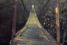 bridge  ♥