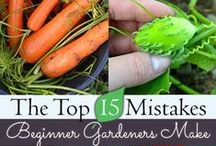 Gardening / Gardening for Self Reliance