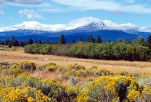 Beautiful Land Trust Preserves