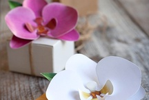 craft: flowers,bows