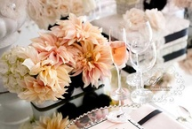 Party Color - Peach Color Scheme / by Kimberly Peuziat