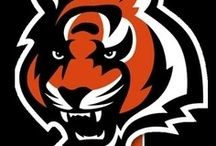 Bengals Football / Just a Minnesota girl (born and raised) loving her Bengals football! / by Amy Rein