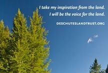 Be a voice for the land