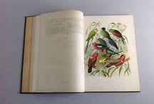 Old Books / Antiquariat