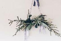 Flower Arrangements & Decorations