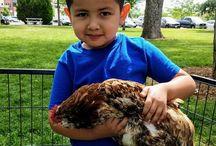 FoCo Cafe's Kids Feeding Kids- Summer Breakfast Program