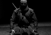 Martial Arts / You know... Cool stuff...