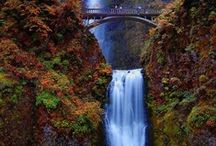 Waterfalls / Some of the spectacular waterfalls from around the world.