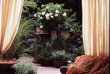the silent garden / Liniștea profundă a locurilor situate pe înălțimi, se compune din murmurul vântului, razele soarelui și frumusețea peisajului..  - Victor Hugo