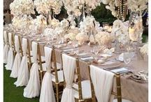 Dress up Chairs / Ideas for dressing up your chairs for the Ceremony and the Reception.