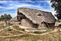 Leaf/ Grass/ Reed Homes with Thannal / This is collection of research & works done by Thannal Hand Sculpted Homes using Leaf / Grass / Reed over roof & walls. Thatching  and walls are covered using coconut leaf, palm leaf, Lemon grass, Vetriver grass, Korakai reeds (Arundo donax) a tall perennial cane.