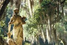 Romance of the South / Culture, Nature and Colonial Style - Say no to racism!