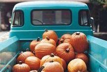 Halloween / by Jenny Sellers-Flippo