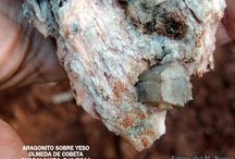 Recursos Biología y Geología / Blogs y páginas de recursos didácticos para la enseñanza y el aprendizaje de las Ciencias.