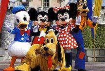 Disneyland & sixflaggs SO FUNNY!!