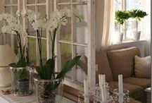 Alte Fenster/Türen / ...