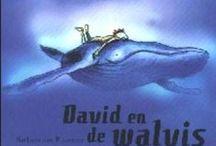 walvissen / de reuzen van de zee...
