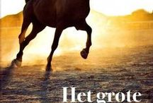 paarden / paarden en een pony