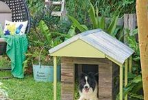 Animals - dog houses & other doggie things / Houses and other necessities for fur kids.