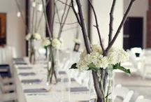 VASES! / Centerpiece Vases, Accent pieces and all things Spectacular!