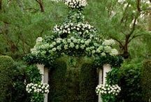 Breathtaking Event Arbors, Chuppas, Arches & Pergolas / Arbors to create cozy nooks in your backyard, section off a sanctuary to unwind, or showcase a wedding ceremony.