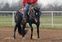 Horse Care and Riding Tips / Want to learn more about horse care or perhaps get tips to improve your riding or training abilities? This is the board for you!