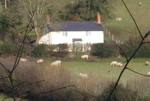Pear Tree Cottage / Previous RuralRetro HQ-idyllic while it lasted.Always fond memories