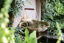 ~Boxwood~Ivy~Statuary~ / ~ Nature ~ Green ~ Gardens ~
