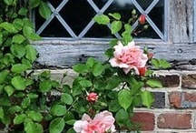 ~Cottages & their gardens~