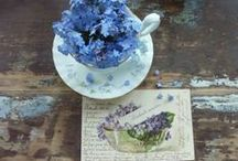 ~Flowers Forget-me-nots~ / Forget-me-nots are one of my most favorite flowers. Love the bright blue colour and used it often in my BLOG.
