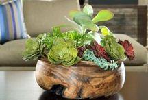 Garden Indoor Ideas