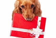 Christmas Gifts For Dog Lovers 2015