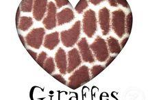 65. Giraffe / Overal vandaan.