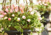Easy Spring Outdoor Garden Decor / Garden decor from curb to door.  Easy decorating ideas for your home.