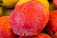 Tropical Mango / Awaken your senses with the deliciously exotic scent of Tropical Mango. Every Tropical Mango form is infused with Mango Puree, which is rich in Vitamin A (beta-carotene) and contains powerful anti-oxidants for younger-looking skin. The amazing fruit also helps in regeneration of skin cells and restoring skin elasticity.